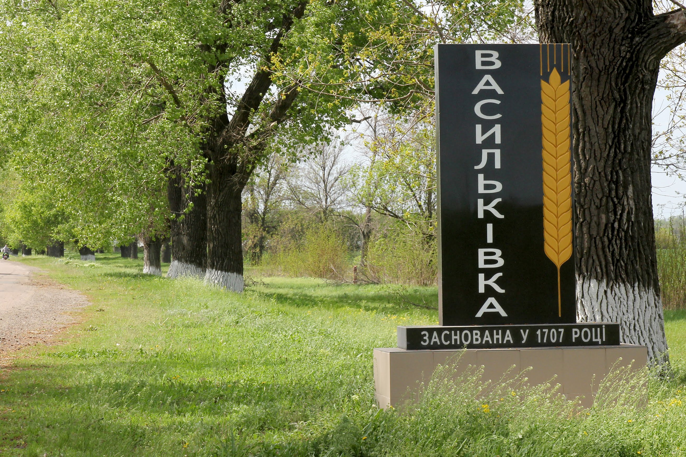 Дніпропетровська ОДА реконструює найбільший навчальний заклад Васильківського району