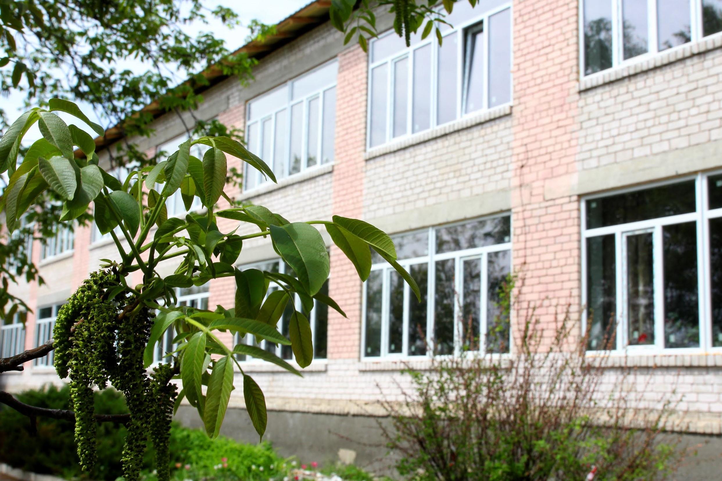 Нове життя отримує опорна школа в селищі Чаплине Васильківського району