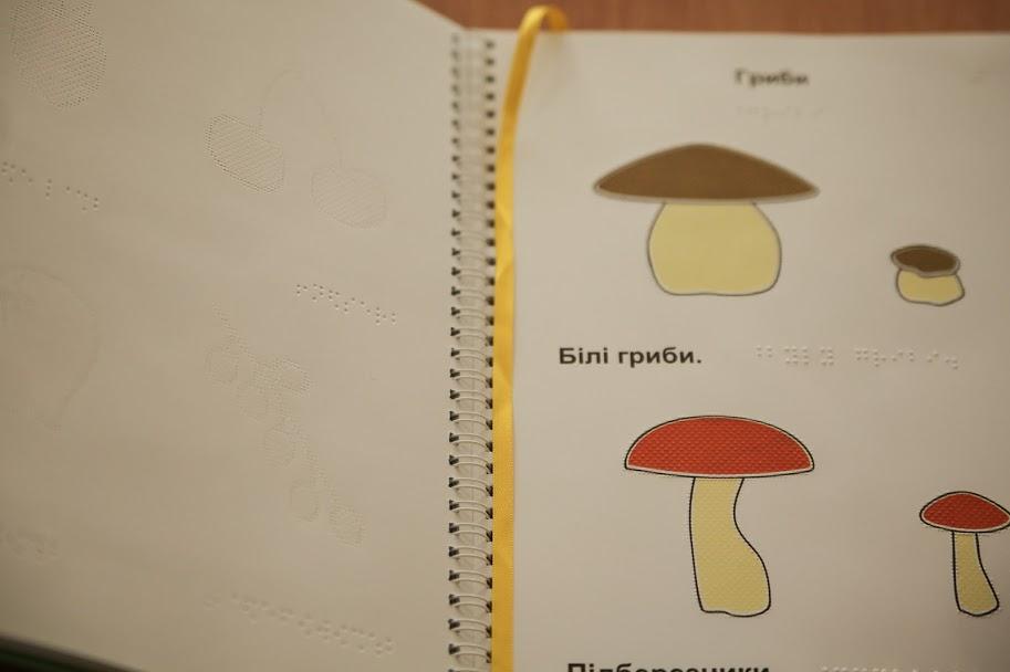 «Можна дізнатися, який вигляд має той чи інший предмет. Ось, наприклад, гриб», – сказав він